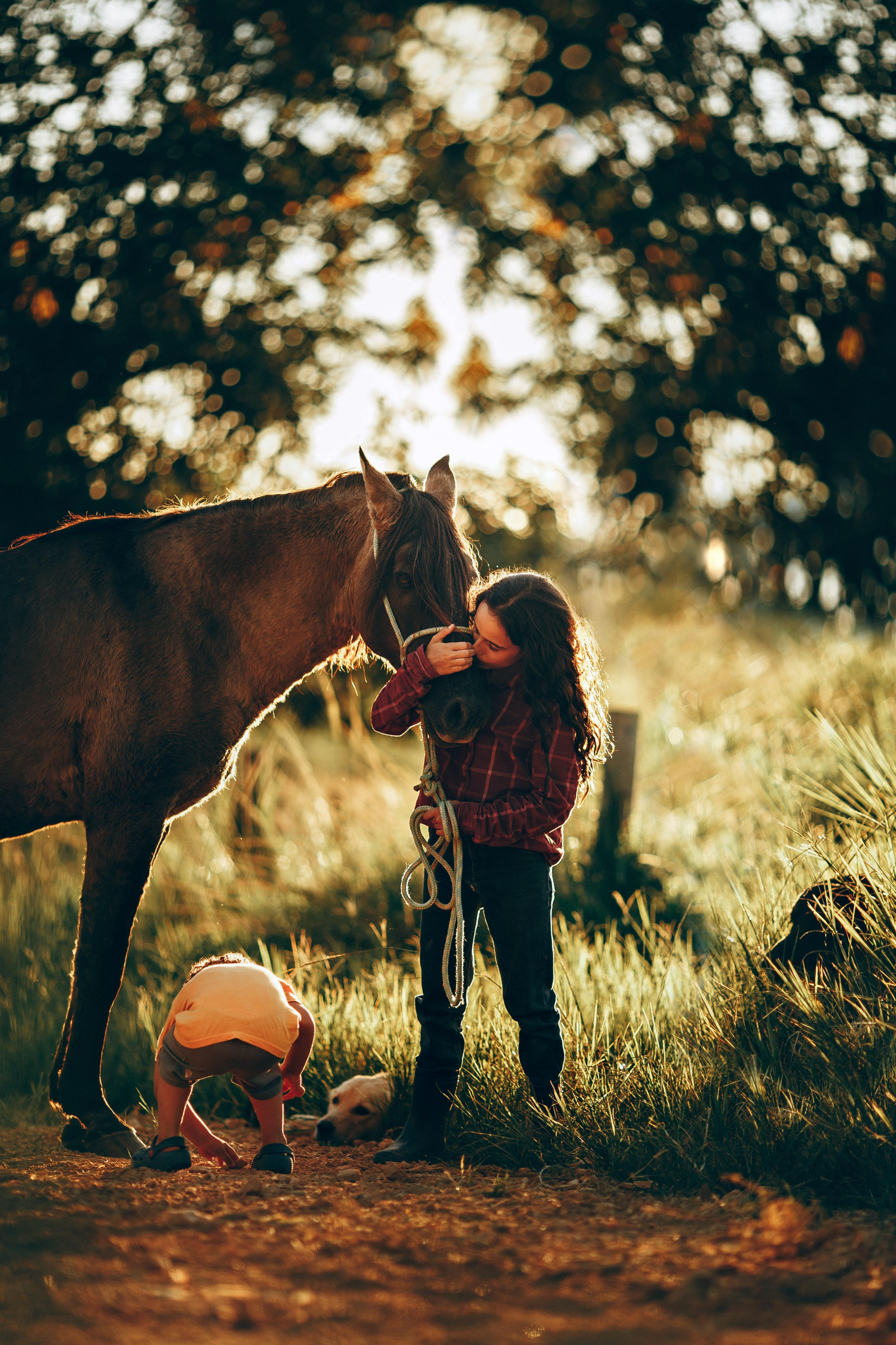 Campus bambini cavallo